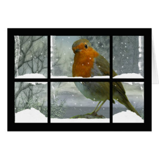Robin Christmas Card with snow scenery
