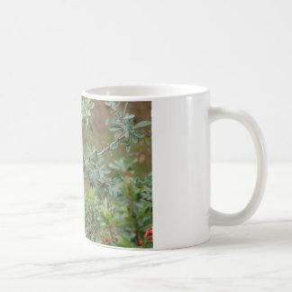 Robin Eating Berries Mug Mugs