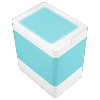 Robin Egg Blue Igloo Cool Box