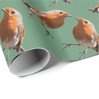 Robin Frenzy Wrapping Paper (Green)