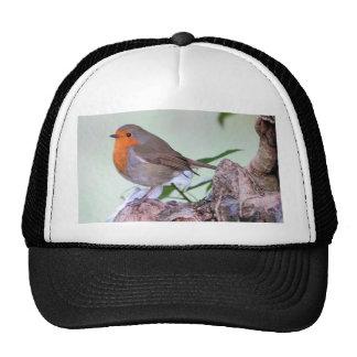 Robin Mesh Hat