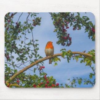 Robin in a Hawthorn Tree Mouse Mat