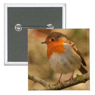 Robin in Sunshine Buttons