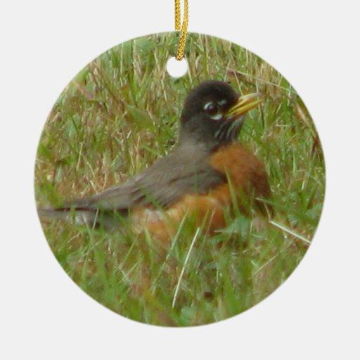 Robin in the Grass Ornament