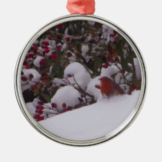 Robin in the Snow Silver-Colored Round Decoration