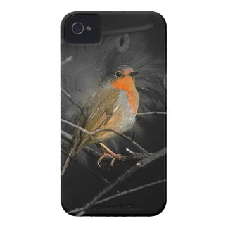 Robin iPhone 4 Covers