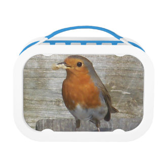 Robin Lunch Box