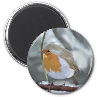 Robin magnet