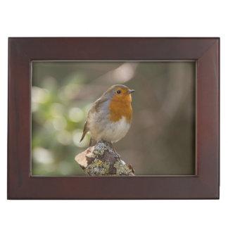 Robin Memory Box