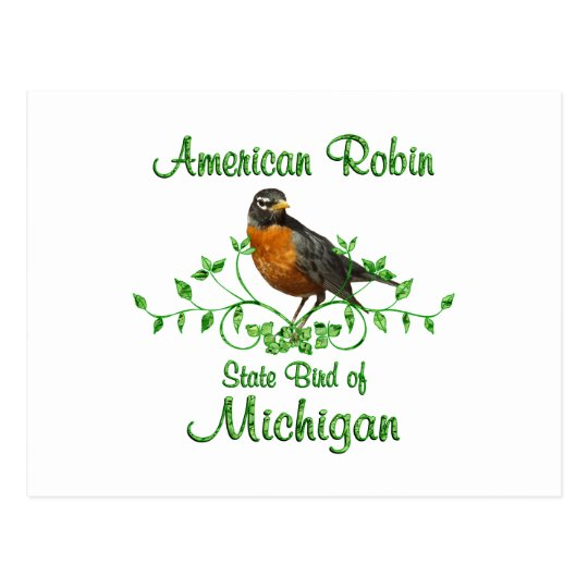 Robin Michigan Bird Postcard