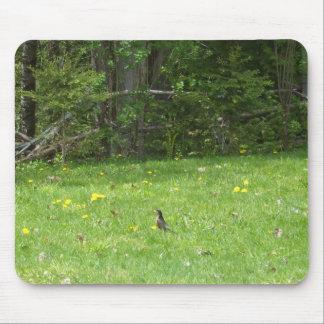 Robin Mouse Mat