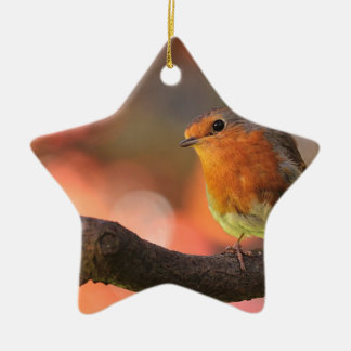 Robin on a branch christmas ornament