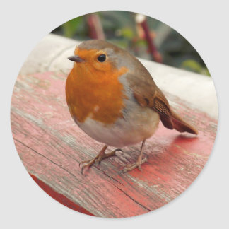 Robin on a Bridge Classic Round Sticker
