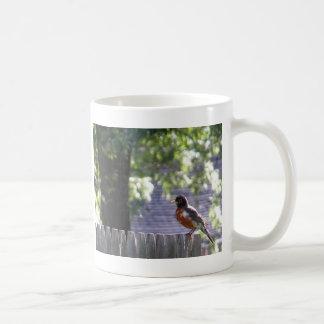 Robin on a fence mug