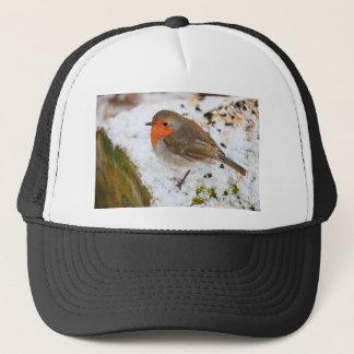 Robin on a snowy log cap