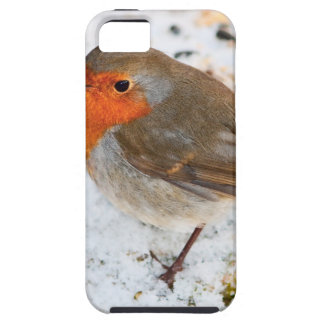 Robin on a snowy log case for the iPhone 5