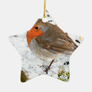 Robin on a snowy log christmas ornament