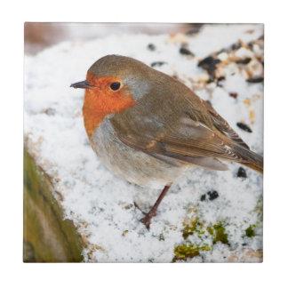 Robin on a snowy log tile