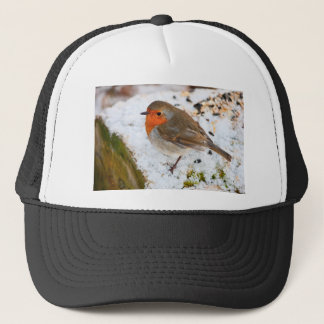 Robin on a snowy log trucker hat