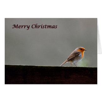 Robin on beam Christmas card