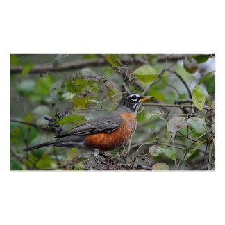 Robin on Berry Bush 1 Pack Of Standard Business Cards