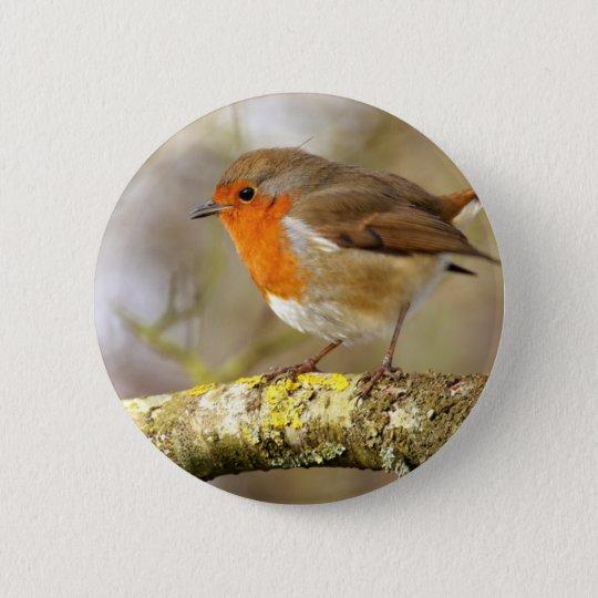 Robin on Branch 6 Cm Round Badge