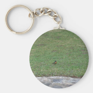 Robin on Lawn Key Ring