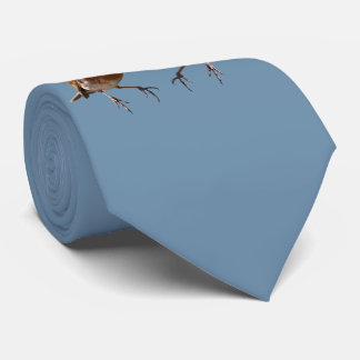 Robin Pals Tie (Sky Blue)