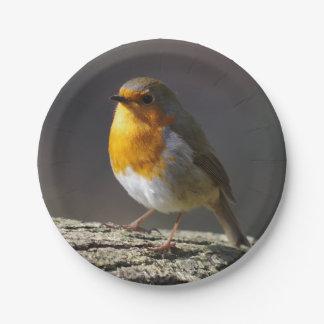 Robin Paper Plates