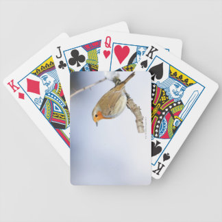 Robin perched on a branch in winter bicycle playing cards