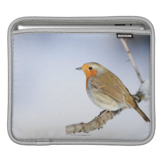 Robin perched on a branch in winter iPad sleeve