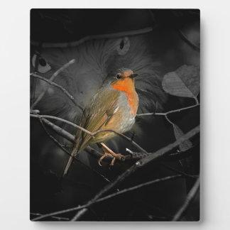 Robin Plaques