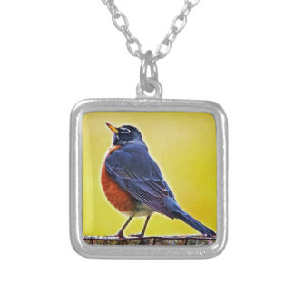 Robin Products Silver Plated Necklace