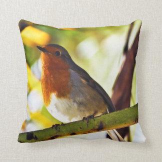 Robin red breast bird 2 cushion