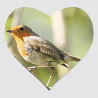 Robin red breast bird heart sticker