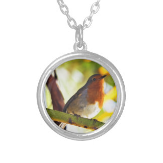 Robin red breast bird silver plated necklace