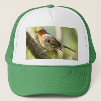 Robin red breast bird trucker hat