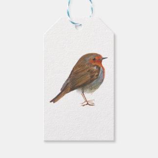 Robin Red Breast Bird Watercolor Painting Artwork Gift Tags