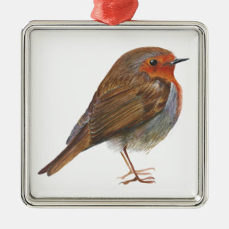 Robin Red Breast Bird Watercolor Painting Artwork Silver-Colored Square Decoration