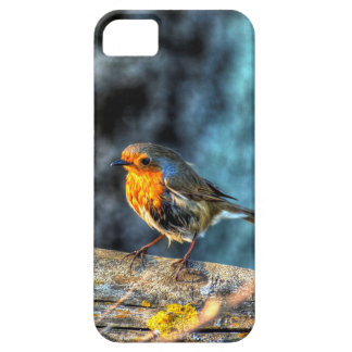 Robin Red Breast Case For The iPhone 5