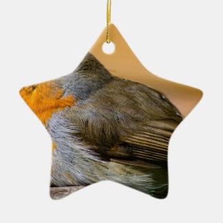 Robin Red Breast. Christmas Ornament