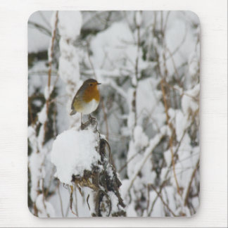 Robin Red Breast Mouse Mats