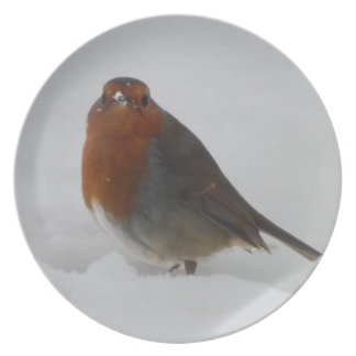 Robin Red Breast Plate