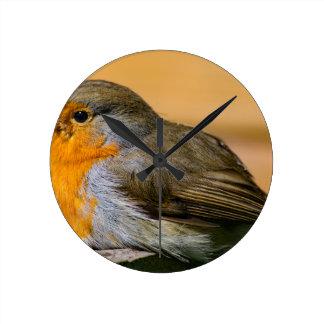 Robin Red Breast. Round Clock