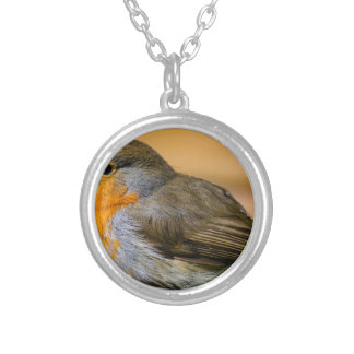 Robin Red Breast. Silver Plated Necklace