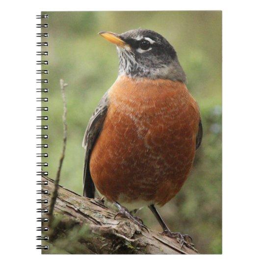Robin Red Breast Spiral Notebook