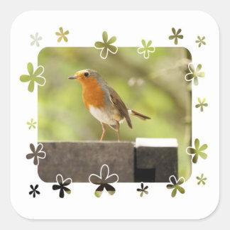 Robin red-breast square sticker
