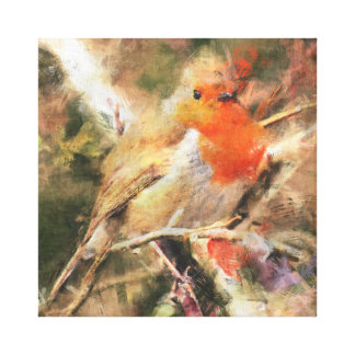 Robin Redbreast Canvas Print