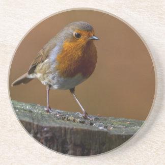 Robin Redbreast Coaster