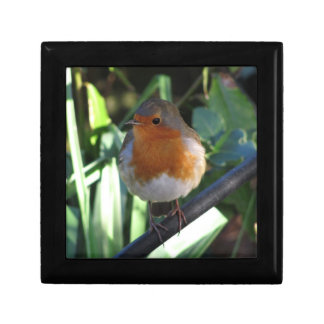 Robin Redbreast Gift Box